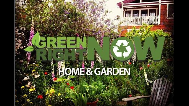 Lean toward green this Fourth of July