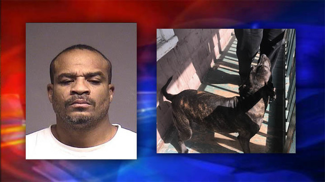 Police: Johnson City man assaulted dog, then went for dog's owner